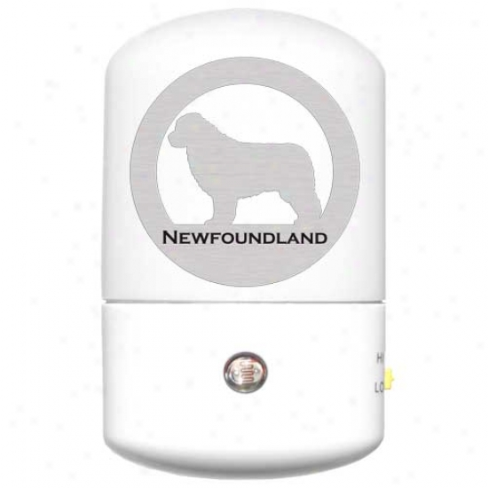 Newfoundland Led Night Light