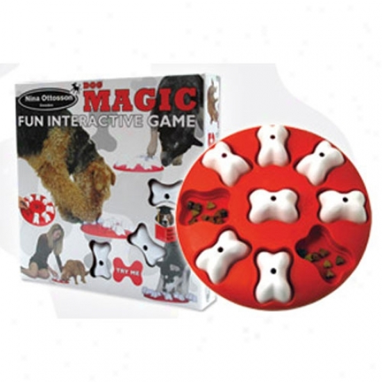 Nina Ottosson Dog Magiv Interactive Dog Toy