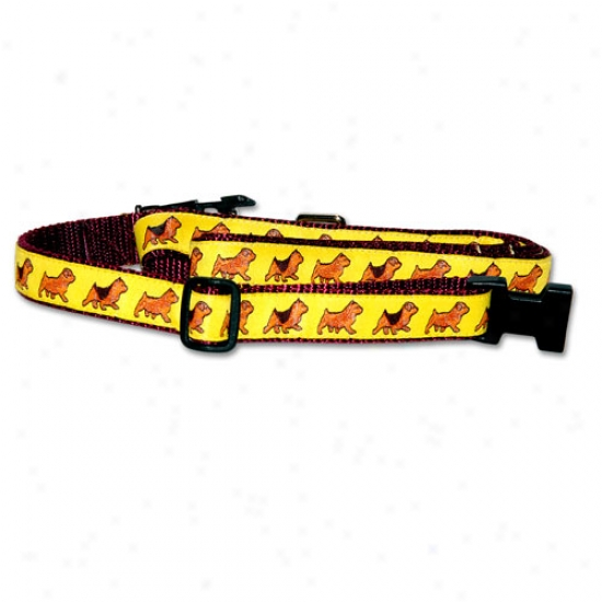 Norfolk And Norwich Terrier - Burgundy Collar And Conduct Set