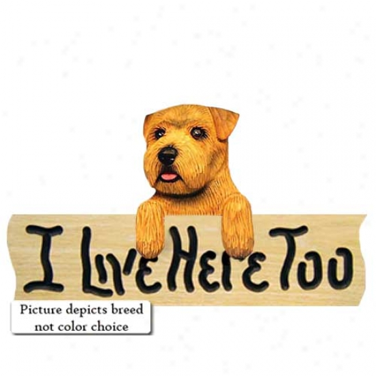 Norfolk Terrier I Live Here Too Oak Finish Sign Black And Tan