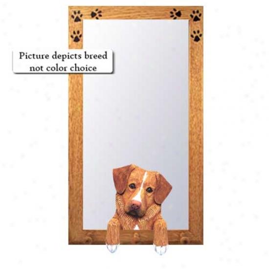 Nova Scotia Duck Tolling Retriever Hall Mirror With Basswood Pine Frame