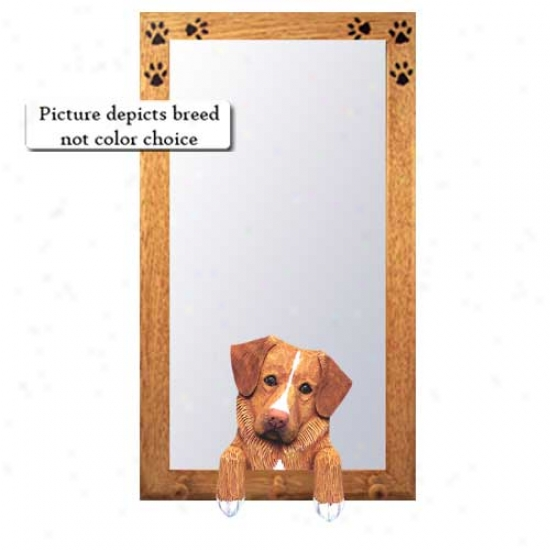 Nova Scotia Duck Tolling Retriever Hall Mirror With Oak Regular Frame