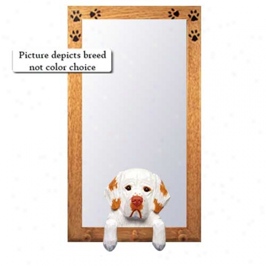 Orange Clumber Spaniel Hall Mirror With Basswood Walnut Frame