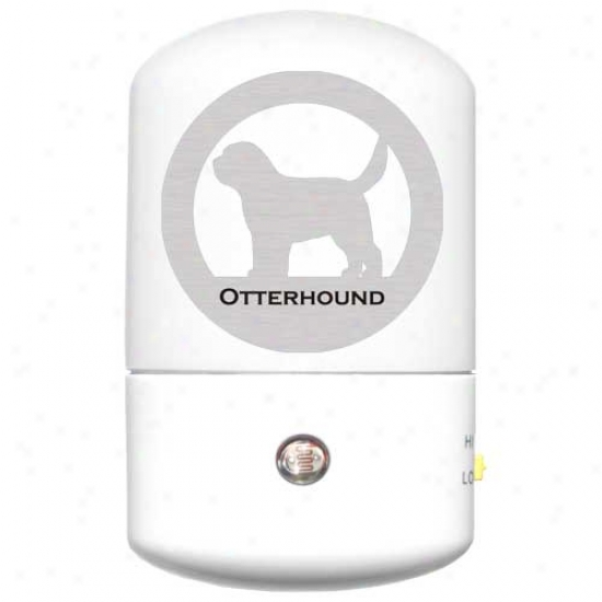 Otterhoudj Led Night Light