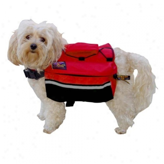 Outward Hound Quick Release Back Pack Small - Assorted Colors