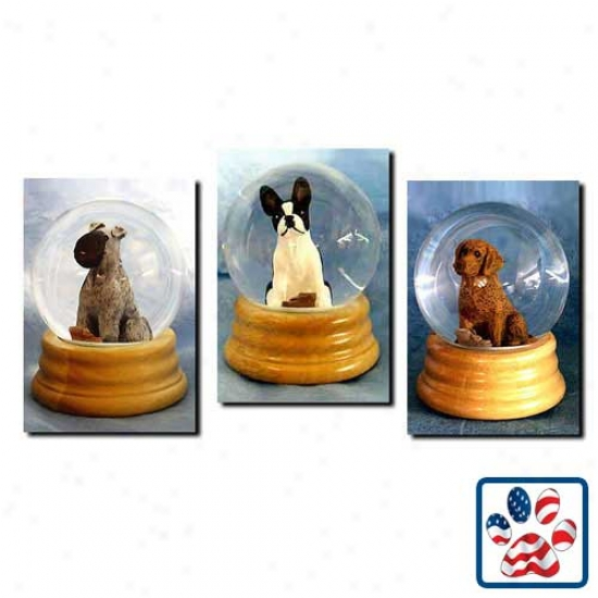 Parish priest Russell Terrier (black And White) Musical Snow Globe-  Smooth
