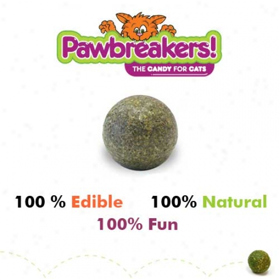 Pawbreakers Catnip Ball