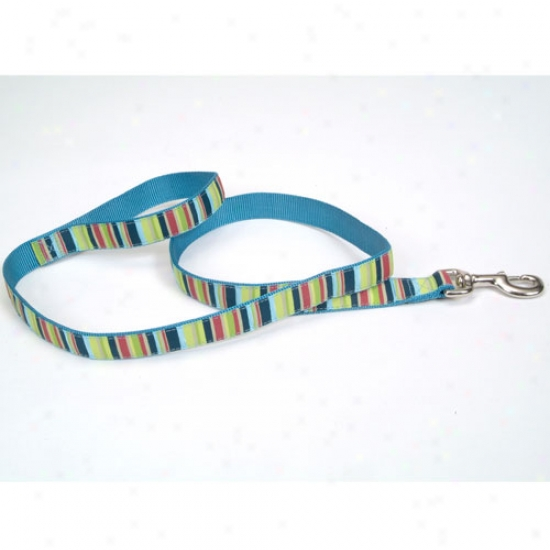 Pet Attire Multi Stripe Ribbon Lead 5 Eighths X 6 Pay