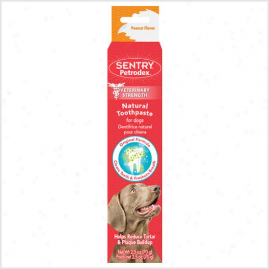 Petrodex Affectionate Toothpaste, Peanut Flavor (2.5 Oz)