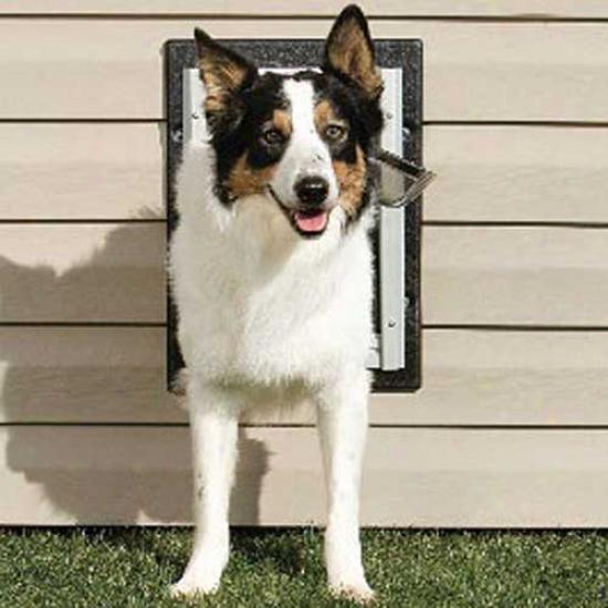 Petsafe Wall Entry Aluminum Pet Door Medium