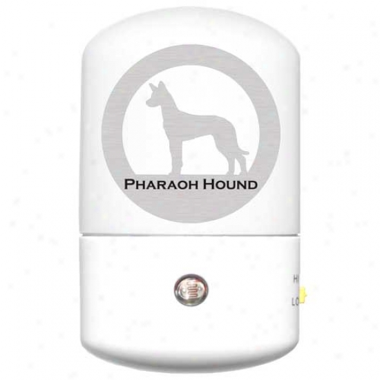 Pharaoh Hound Led Night Light