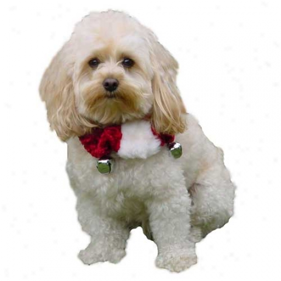 Plush Puppies Holiday Bell Collar Small
