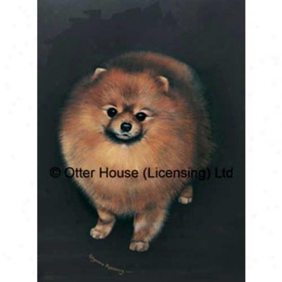 Pomeranian Garden Flag By Pollyanna Pickering