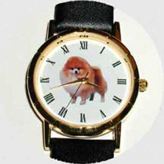Pomeranian Watch - Large Face, Black Leather