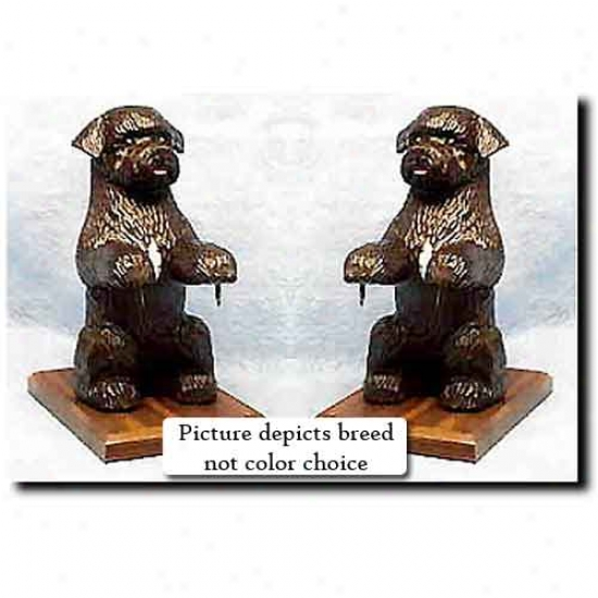 Portuyuese Water Dog Bookends Liver