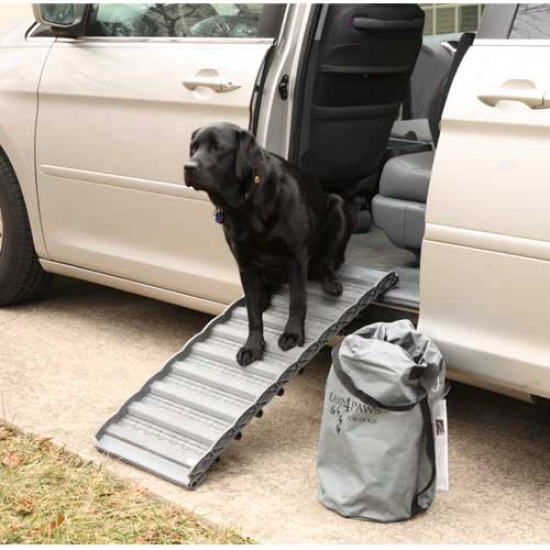 Ramp 4 Paws 10links  37 In L X 15.5 In W