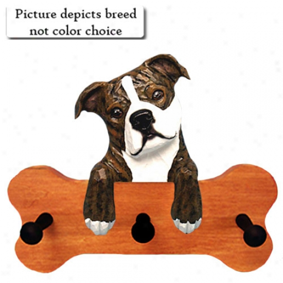 Red And White Staffordshire Bull Terrier Bone Hang Up Maple Finish