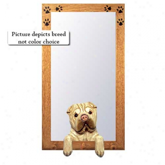 Red Fawn Chinese Shar-pei Hall Mirror With Oak Golden rFme