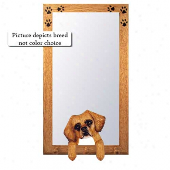 Red Tibetan Spaniel Hall Mirror With Basswood Pine Frame