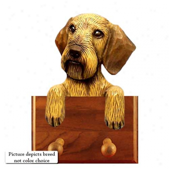 Red Wirehair Dachshund Leash Holder
