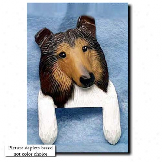 Sable Rough Collie Door Topper