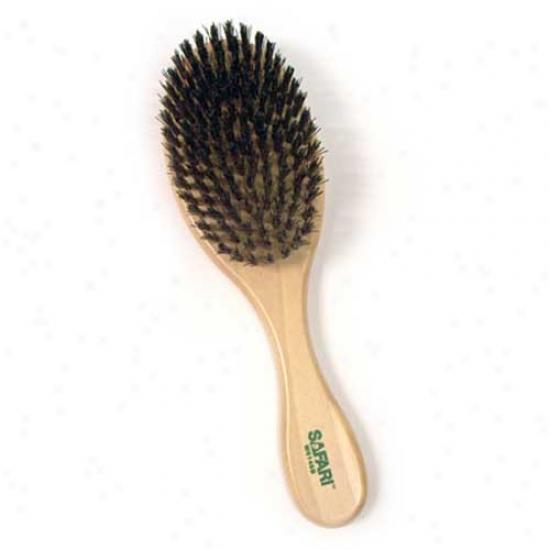 Safari Bristle Brush Small