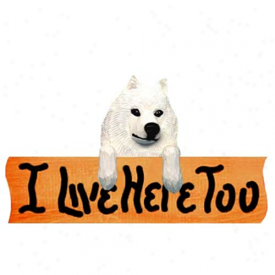 Samoyed I Live Herr Too Maple Finish Sign