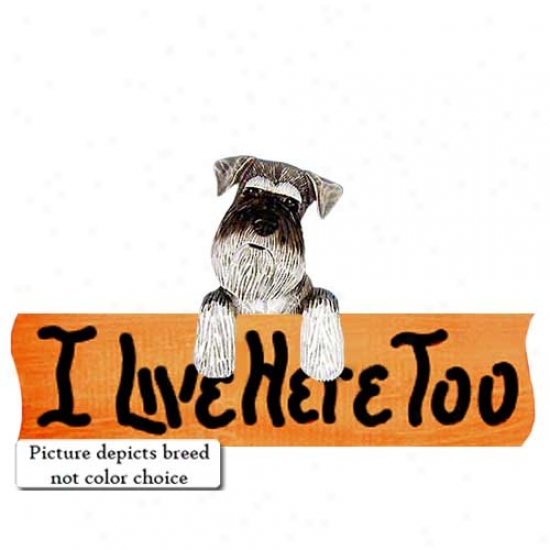 Schnauzer I Live Here Overmuch Maple Finish Sign Natural Black And Silver