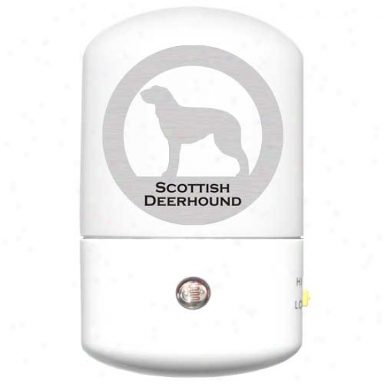 Scottish Deerhound Led Nigh5 Light