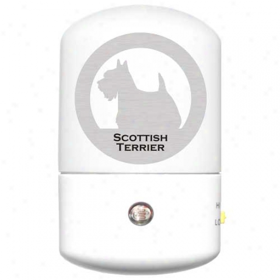 Scottish Terrier Led Night Light