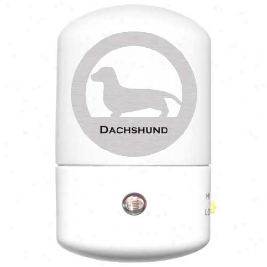 Smooth Dachshund Led Night Light