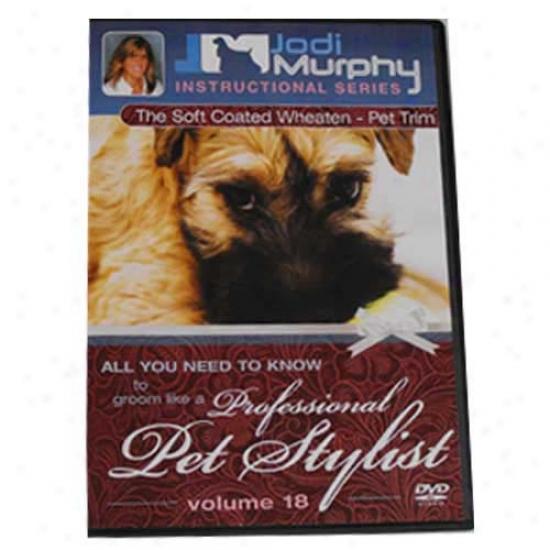 Soft Coated Wheaten Terier Pet Trimgrooming Dvd By Jodi Murphy