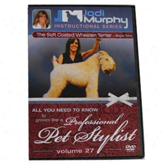 Soft Coated Wheaten Terrier Show Trim Grooming Dvd By Jodi Murphy