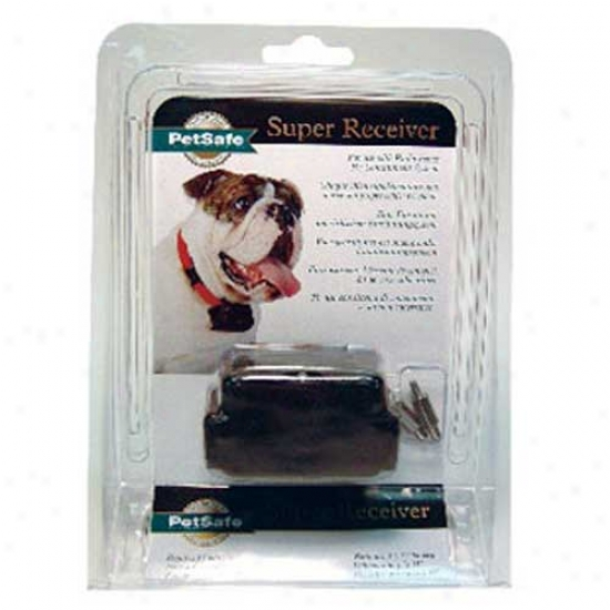 Stubborn Dog Receiver Collar