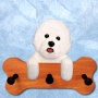 Bichon Frise Bone Hang Up Maple Finish