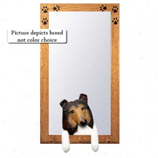 Tri Rough Collie Hall Mirror With Oak Natural Frame
