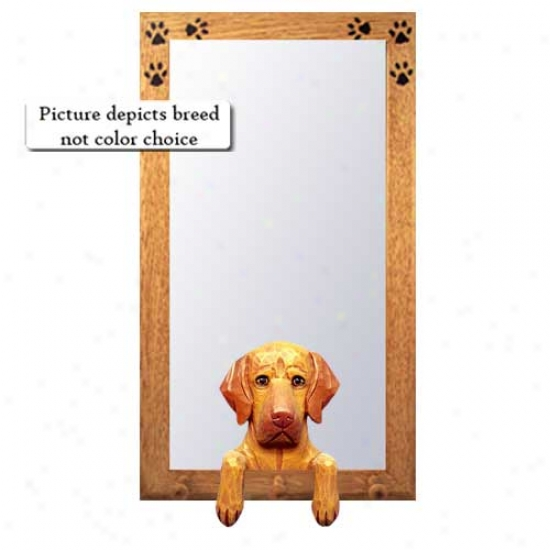 Vizsla Hall Mirror Wkth Oak Golden Frame