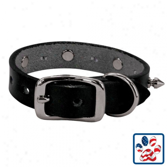 Weaver Spikes Collar 5/8inch X 7-9inches Black
