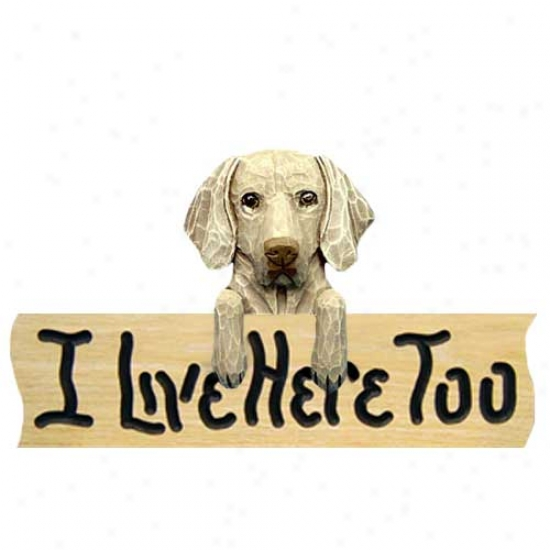 Weimaraner I Live Here Too Oak Finish Sign