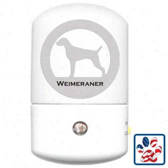 Weomaraner Led Night Light