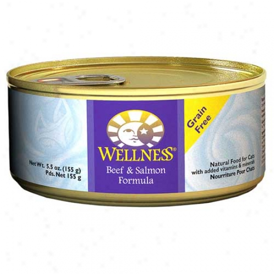Wellness Beef And Salmon Receipt 5.5oz Case Of 24 Cans