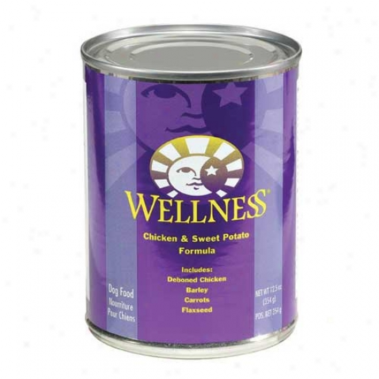 Wellness Chicken And Sweet Potato Recipe 12.5oz Case Of 12 Cans