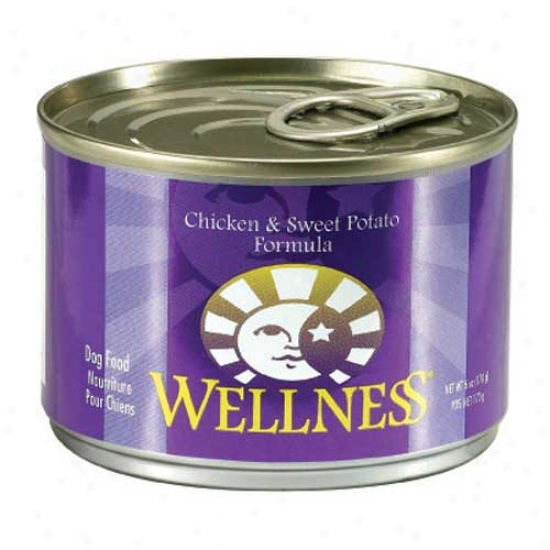Wellness Chicken And Sweet Potato Recipe 6oz Case Of 24 Cans