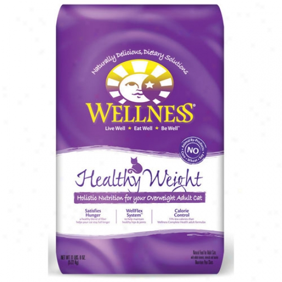 Wellness Complete Health Healthy Weight Recipe 12lbs