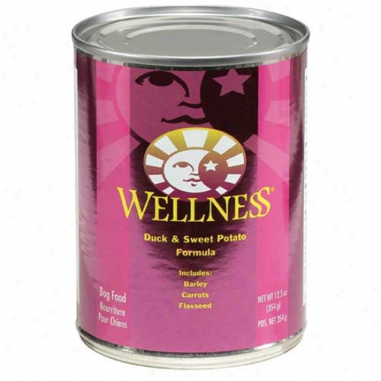 Wellness Duck And Sweet Potato Recipe 12.5oz Case Of 12 Cans