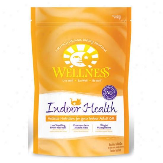 Wellness nIdoor Soundness Recipe 12lbs