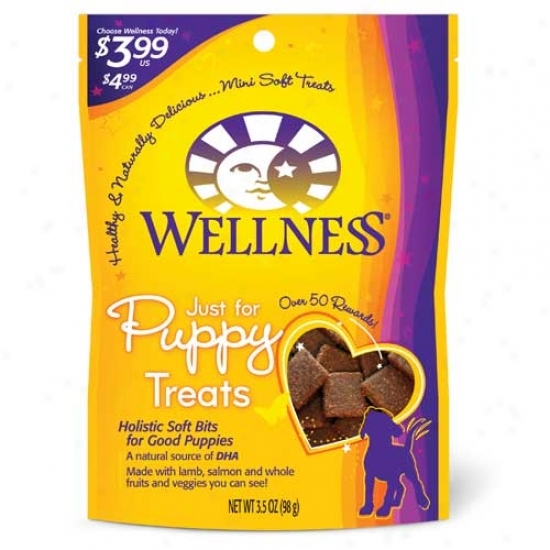 Wellness Just For Puppy Lam6 And Salmon Treats 3.5oz