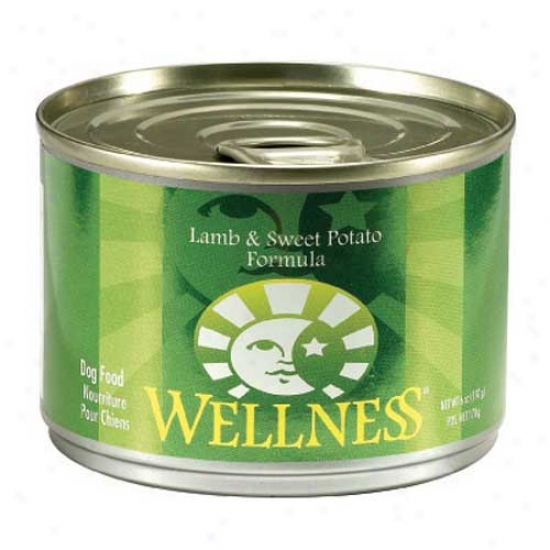 Wellness Lamb And Sweet Potato Recipe 6oz Case Of 24 Cans