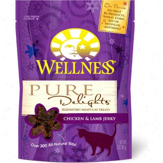 Wellness Pure Delights Cat Treats Chicken And Lamb 3 Ounces