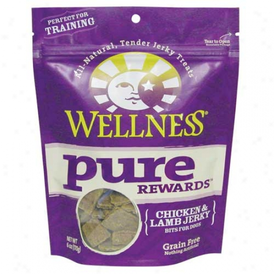 Wellness Innocent Rewards Chicken And Lamb Dog Treats 6oz